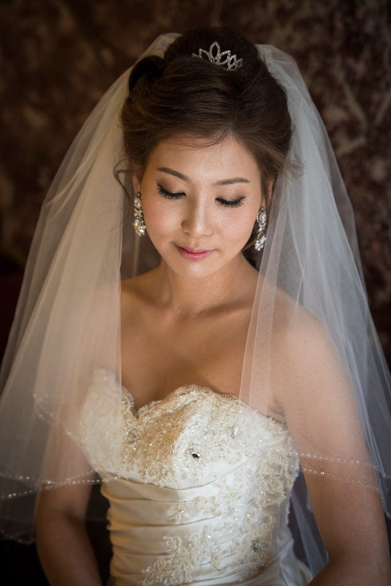 Wedding Photography, bride with veil pulled back behind her hair