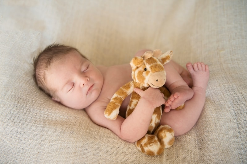 Baby Photography, baby asleep with stuffed giraffe
