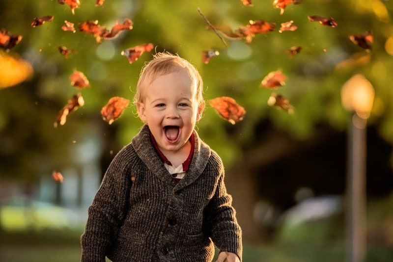 Family Photography, little boy with fall leaves coming around his head