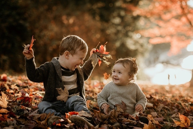 Family Photography, young siblings playing in leaves