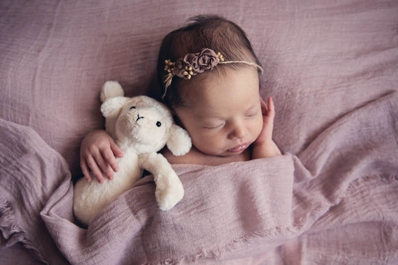Baby Photography, baby asleep with stuffed lamb