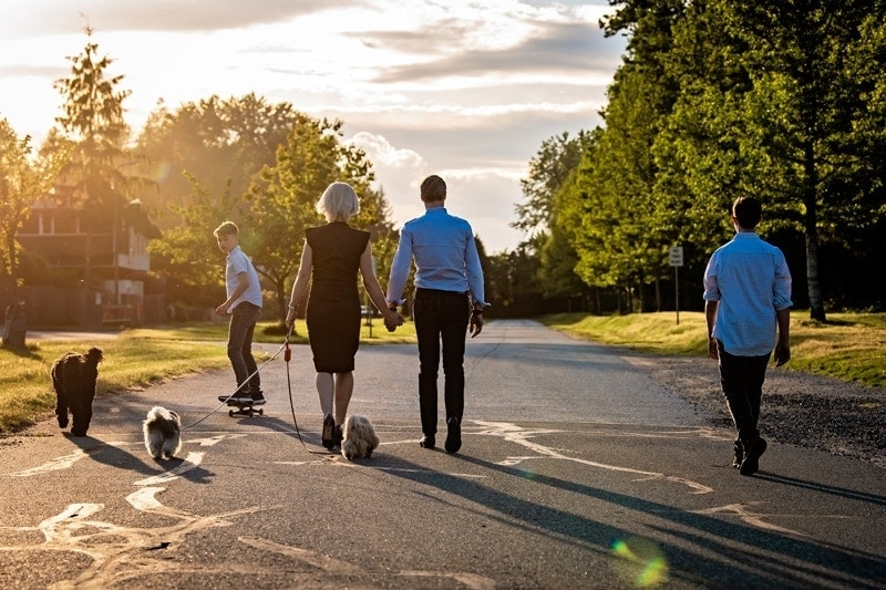 Family Photography, family of 4 taking a walk together with their dogs
